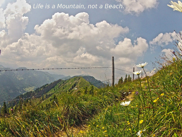 Life-is-a-mountain-not-a-beach-Foto